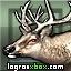 Consultar guías para el logro 'Mutant Elk'