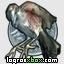 Capítulo 10: Pájaro de plata (condemned-criminal-origins)