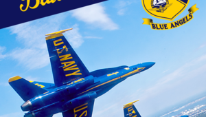 Leer noticia Añadido juego Blue Angels Aerobatic Flight Simulator para Xbox One completa